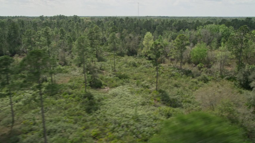 5K stock footage aerial video of flying by forest and clearings, Cocoa, Florida Aerial Stock Footage | AX0034_057
