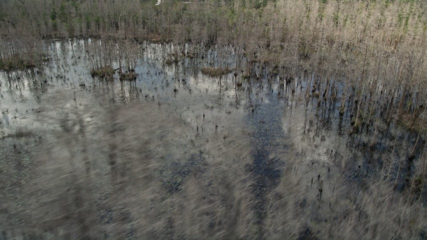 5K stock footage aerial video fly by swamps and bare trees, Orlando, Florida Aerial Stock Footage | AX0035_061
