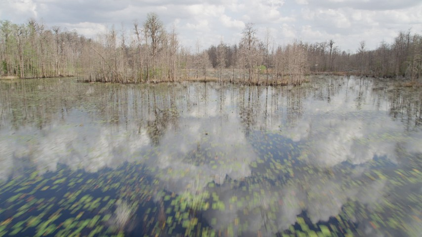 5K stock footage aerial video descend low over swamps and bare trees, Orlando, Florida Aerial Stock Footage | AX0035_067