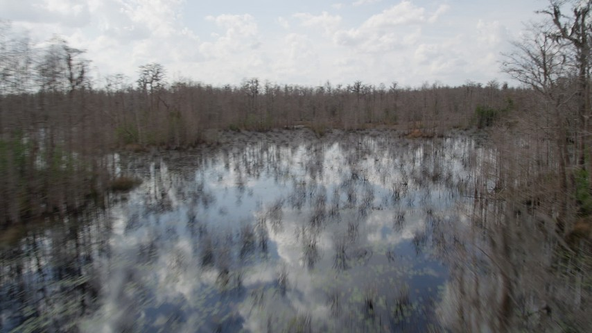 5K stock footage aerial video of swampland and leafless trees in Orlando, Florida Aerial Stock Footage | AX0035_080