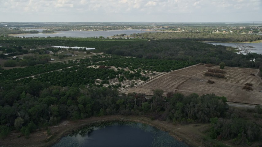 5K stock footage aerial video of passing orchard and fields on the shore of Johns Lake, Florida Aerial Stock Footage | AX0035_100