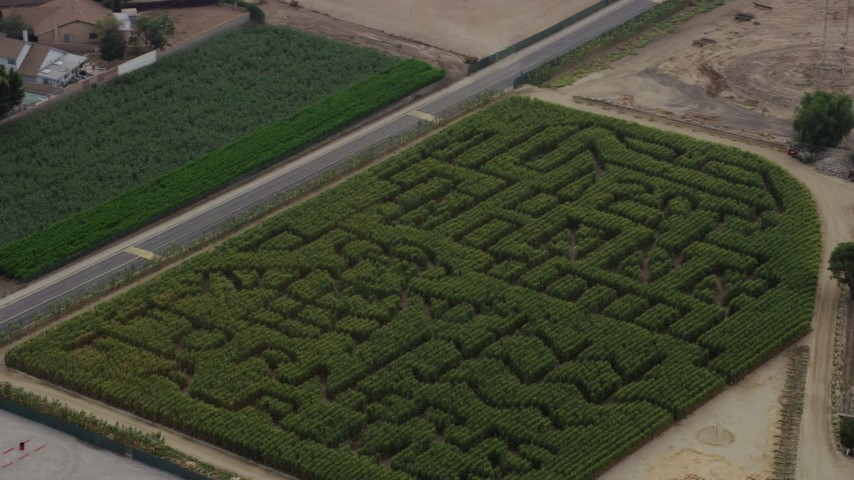 8K stock footage aerial video of Forneris Farms corn maze in Mission Hills, California Aerial Stock Footage | AX0157_081