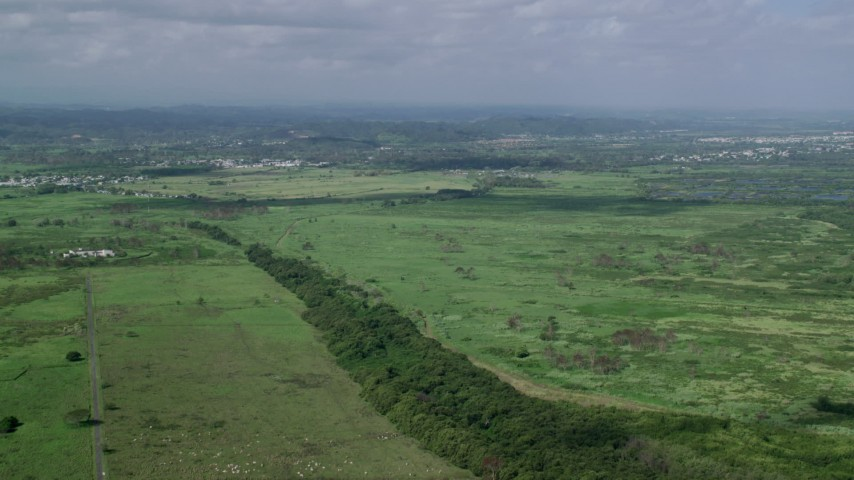 5k Aerial Video Flying over grassland, Toa Baja, Puerto Rico Aerial Stock Footage | AX101_030