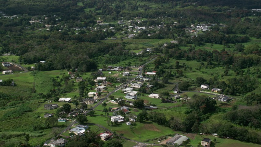 5k Aerial Video of Rural neighborhood with lush green grass and trees, Vega Baja, Puerto Rico  Aerial Stock Footage | AX101_043