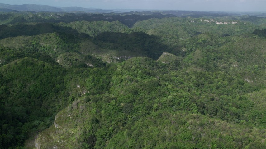 Tree covered mountains and jungle, Karst Forest, Puerto Rico Aerial Stock Footage | AX101_050