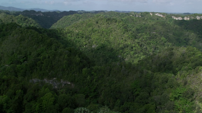 5k Aerial Video Panning mountains and jungle, Karst Forest, Puerto Rico Aerial Stock Footage | AX101_053