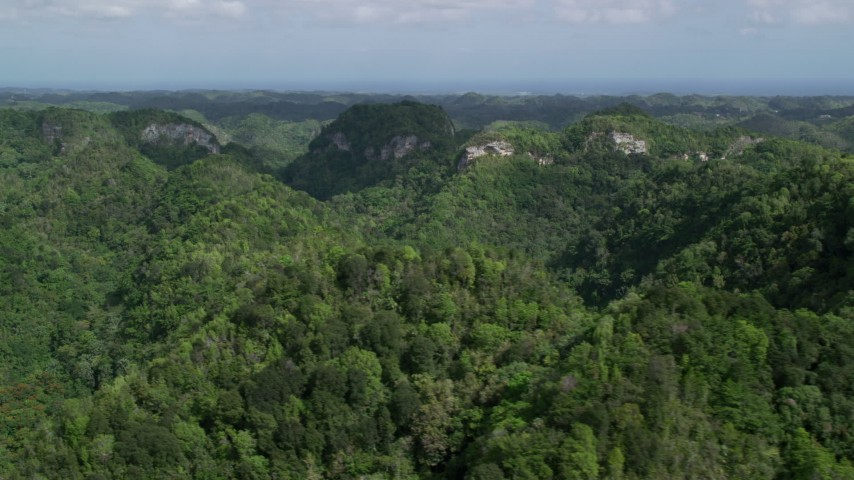 5k Aerial Video Flying through lush jungle and mountains, Karst Forest, Puerto Rico Aerial Stock Footage | AX101_054