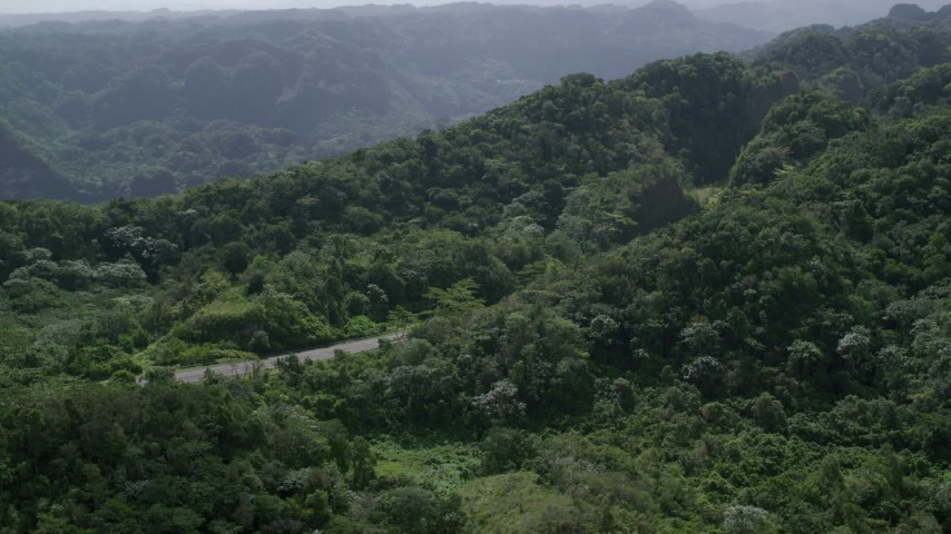 5k stock footage aerial video of a Highway cutting through lush green forests, Karst Forest, Puerto Rico  Aerial Stock Footage | AX101_077