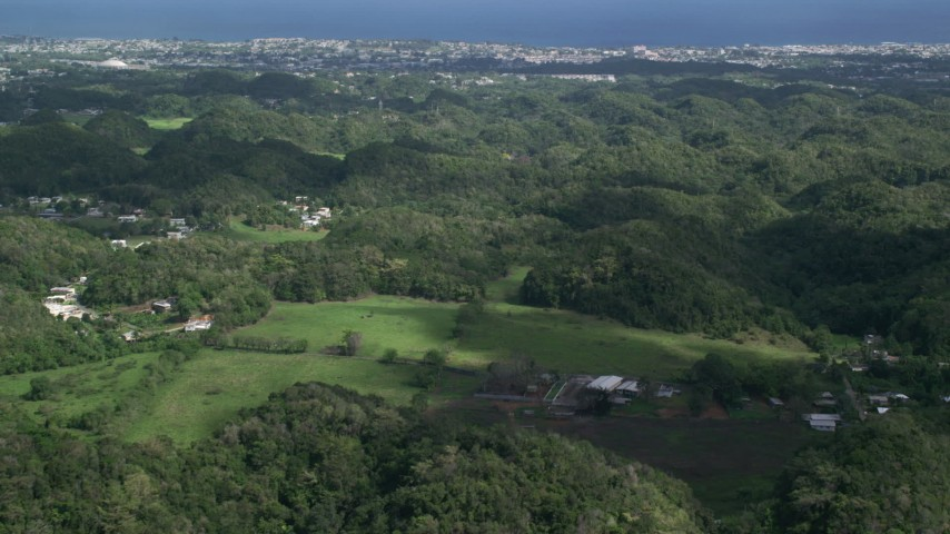 5k stock footage aerial video Flying over tree covered hills and rural homes toward the coast, Arecibo, Puerto Rico Aerial Stock Footage | AX101_129