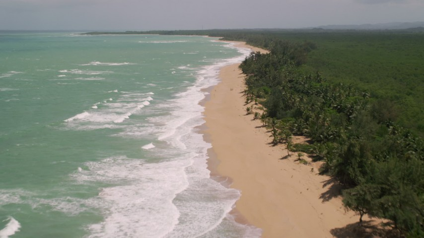 5k stock footage aerial video of Waves rolling from pristine turquoise water along a tree lined beach, Loiza, Puerto Rico  Aerial Stock Footage | AX102_021