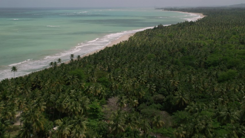 5k stock footage aerial video of Beach bordered by jungle and clear turquoise waters, Loiza, Puerto Rico  Aerial Stock Footage | AX102_028