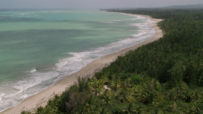 5k stock footage aerial video of a Beach bordered by jungle and turquoise waters, Loiza, Puerto Rico Aerial Stock Footage | AX102_029