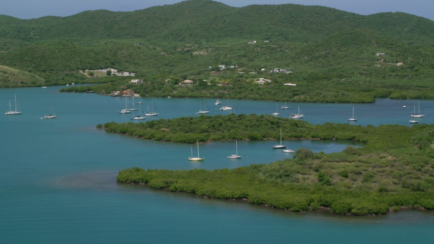 5k stock footage aerial video Orbiting sail boats in sapphire blue waters along tree covered coasts, Culebra, Puerto Rico Aerial Stock Footage   AX102_141
