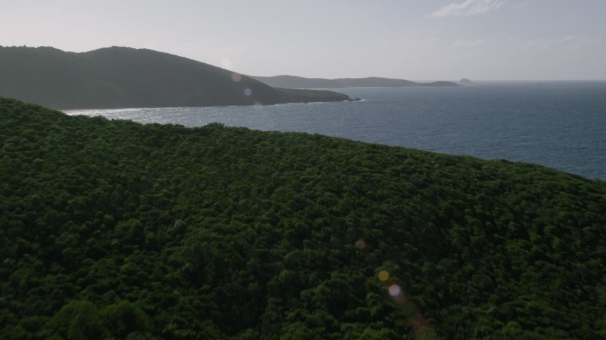 5k stock footage aerial video Flying over jungle on an island and Caribbean blue waters, Culebra, Puerto Rico Aerial Stock Footage | AX103_097