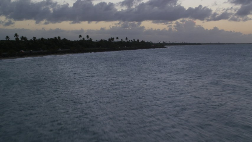 5k stock footage aerial video Flying low over blue Caribbean waters along a coastal highway with palm trees, Dorado, Puerto Rico, twilight Aerial Stock Footage | AX104_099