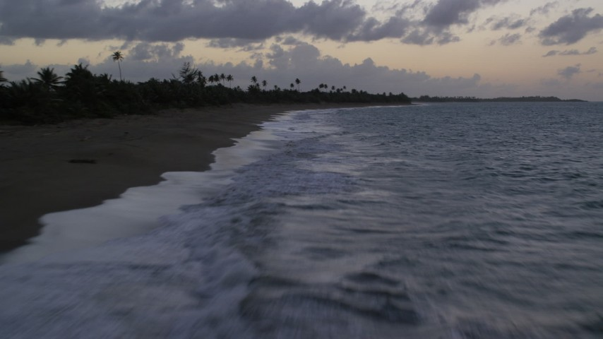 5k stock footage aerial video of Blue waters along a Caribbean beach with palm trees, Dorado, Puerto Rico, twilight Aerial Stock Footage | AX104_101