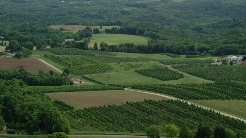 5K stock footage aerial video flying by orchards and a farm, East Palestine, Ohio Aerial Stock Footage | AX107_114