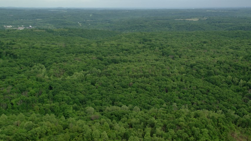 5K stock footage aerial video flying over forests, Darlington, Pennsylvania Aerial Stock Footage | AX107_118