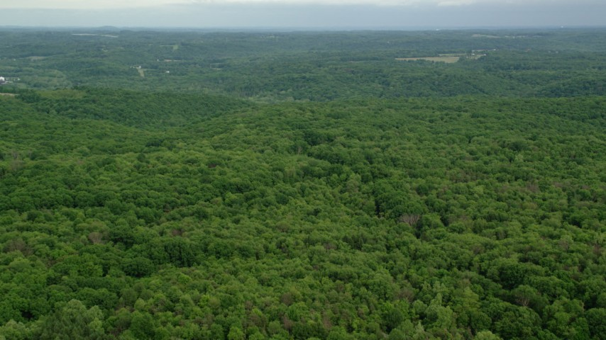 5K stock footage aerial video flying over forests, Darlington, Pennsylvania Aerial Stock Footage | AX107_119