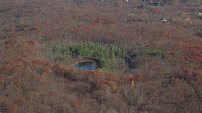 6K stock footage aerial video orbit small pond and forest in Autumn, Garrison, New York Aerial Stock Footage AX119_193 | Axiom Images