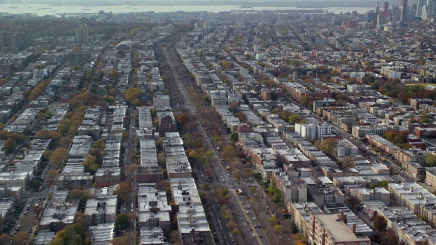6K stock footage aerial video of tree-lined city street through Brooklyn in Autumn, New York City Aerial Stock Footage | AX120_081