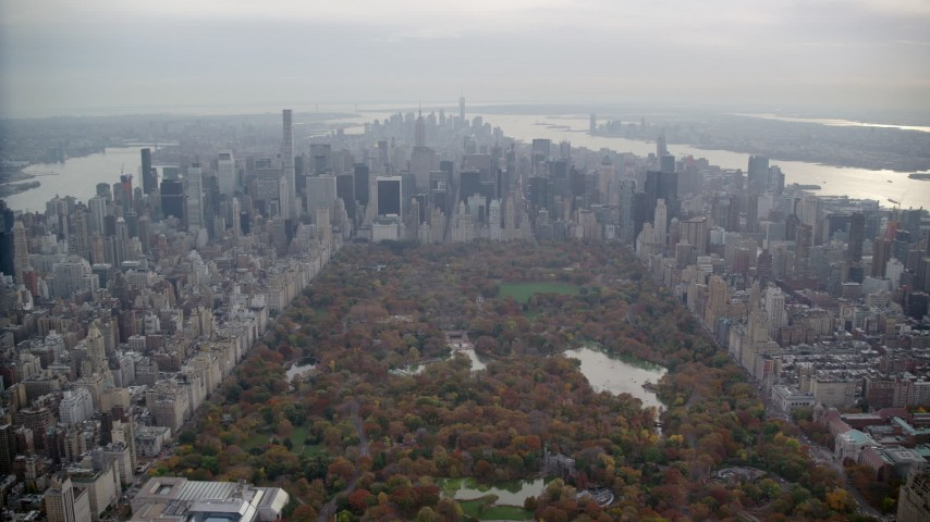 6K stock footage aerial video approach Midtown from Central Park in Autumn, New York City Aerial Stock Footage | AX120_213
