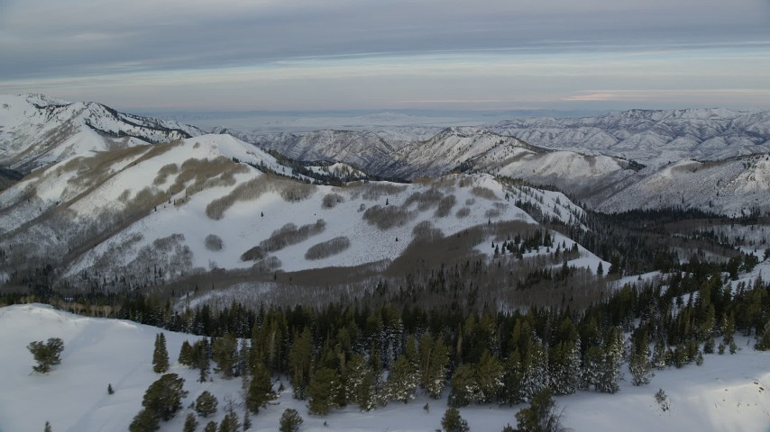 Fly Over Snowy Ridge and Trees in Utah's Wasatch Range at Sunrise Aerial Stock Footage | AX124_141