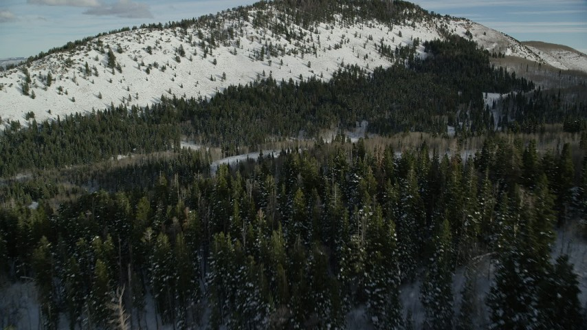 6K stock footage aerial video fly over treetops of an evergreen snow forest in Wasatch Range, Utah Aerial Stock Footage   AX126_286