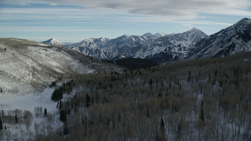 6K stock footage aerial video of a snowy forest with leafless trees in winter, Wasatch Range, Utah Aerial Stock Footage | AX126_290