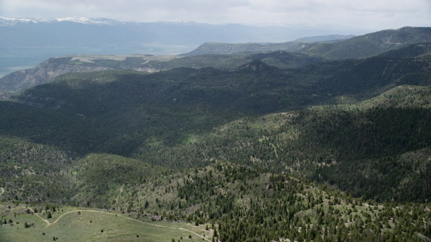 Flying over green mountains, trees, Wasatch Range, Utah Aerial Stock Footage | AX130_130