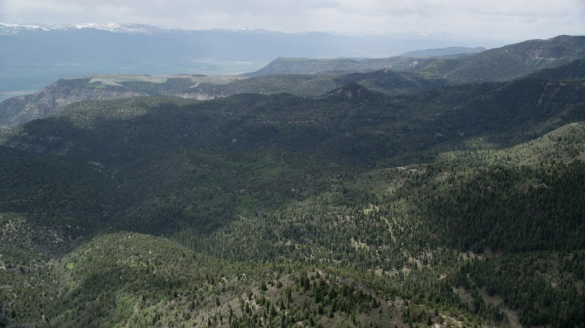 6K stock footage aerial video fly over green mountains and trees, Wasatch Range, Utah Aerial Stock Footage | AX130_130
