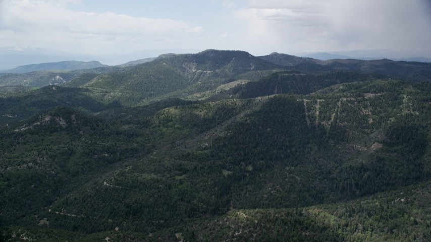 Flying by green mountains, trees, Wasatch Range, Utah Aerial Stock Footage   AX130_131