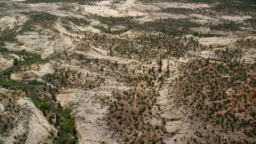 Flying by hills, desert vegetation, trees, Grand Staircase-Escalante National Monument, Utah Aerial Stock Footage | AX130_382