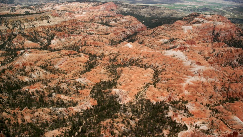 Flying by hills and trees, Bryce Canyon National Park, Utah Aerial Stock Footage | AX130_438