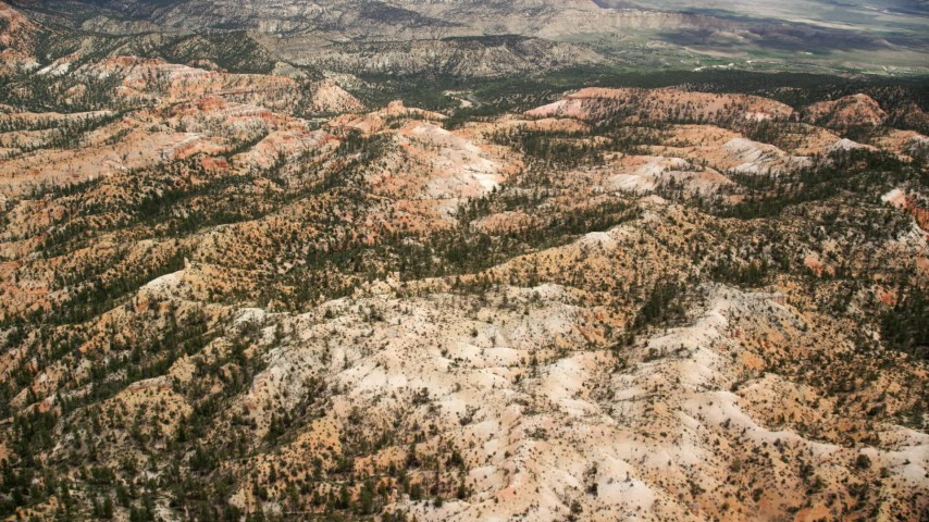 Flying over hills, trees and desert vegetation, Bryce Canyon National Park, Utah Aerial Stock Footage | AX130_445