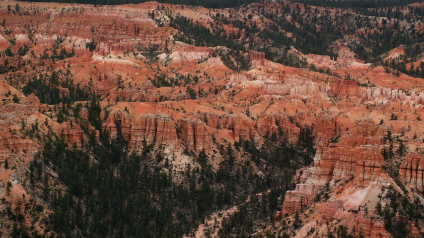 Flying by hoodoos, narrow canyon with trees, desert vegetation, Bryce Canyon National Park, Utah Aerial Stock Footage | AX130_455