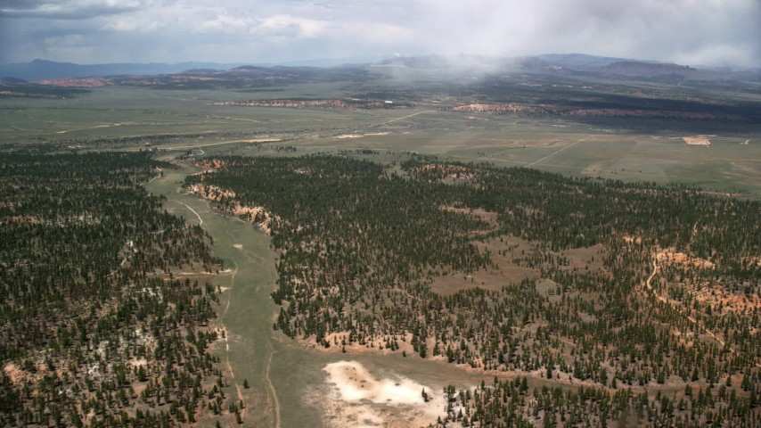 Flying by forest and a valley, Bryce Canyon National Park, Utah Aerial Stock Footage   AX130_491