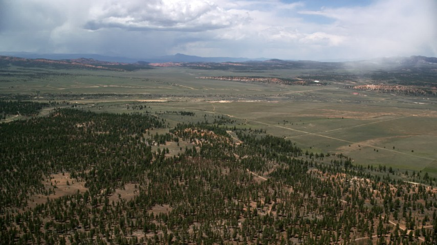 Flying by forest, wide valley outside of the national park, Bryce Canyon National Park, Utah Aerial Stock Footage | AX130_493