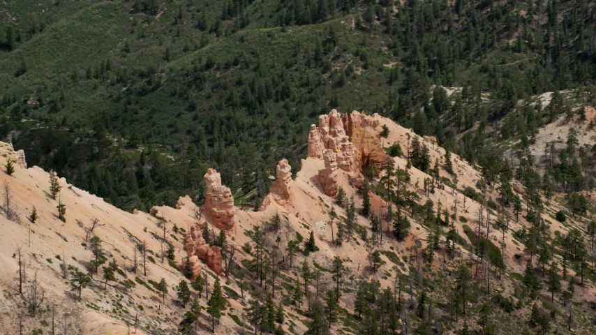 Flying by hoodoos, revealing forested valley, Bryce Canyon National Park, Utah Aerial Stock Footage | AX131_017