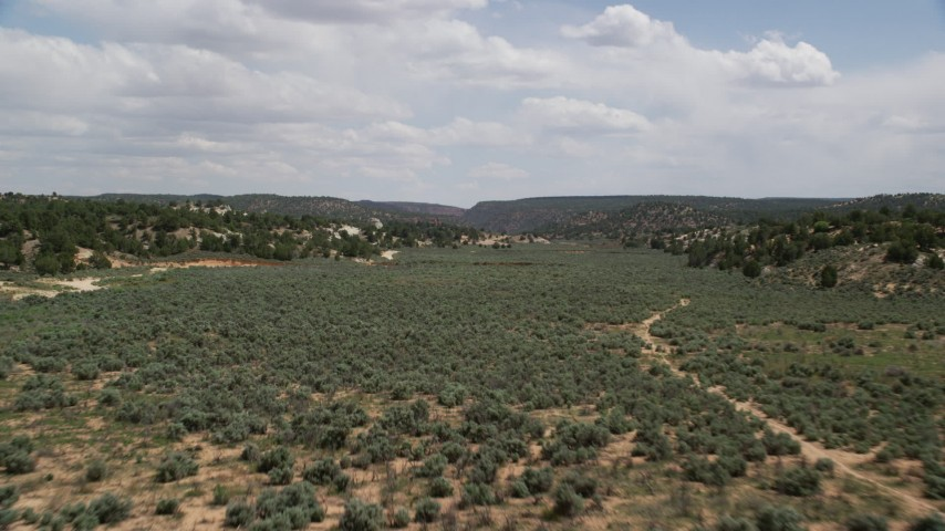 Approaching a dry riverbed, Grand Staircase-Escalante National Monument, Utah Aerial Stock Footage | AX131_065