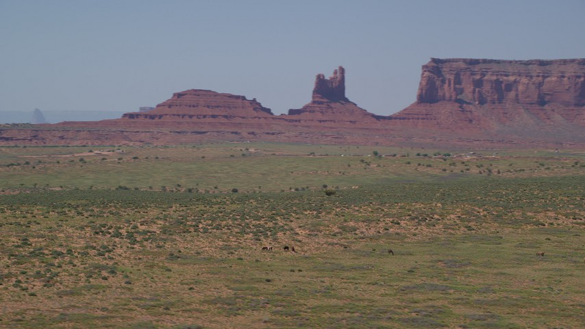 Orbiting grazing horses, giant buttes in the background, Monument Valley, Utah, Arizona Aerial Stock Footage AX135_099