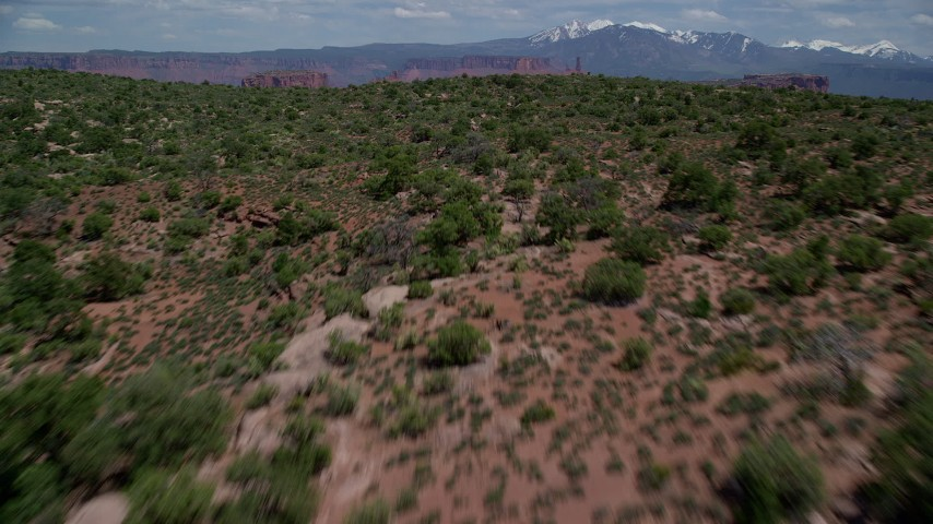 6K stock footage aerial video fly over Dry Mesa vegetation revealing buttes and Parriott Mesa, Moab, Utah Aerial Stock Footage | AX137_088