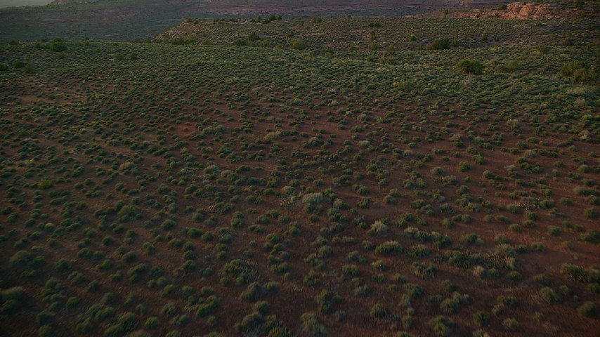 6K stock footage aerial video of flying over desert and vegetation, Moab, Utah, sunset Aerial Stock Footage | AX138_384