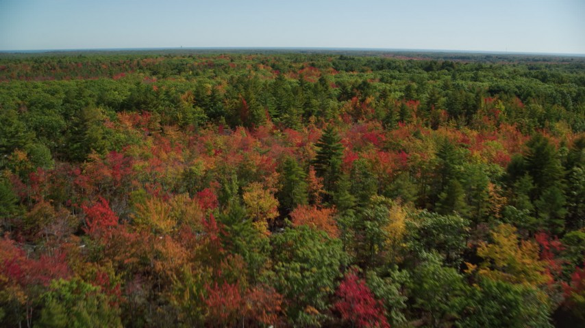 6k stock footage aerial video flying over a colorful forest in autumn, Biddeford, Maine Aerial Stock Footage | AX147_287
