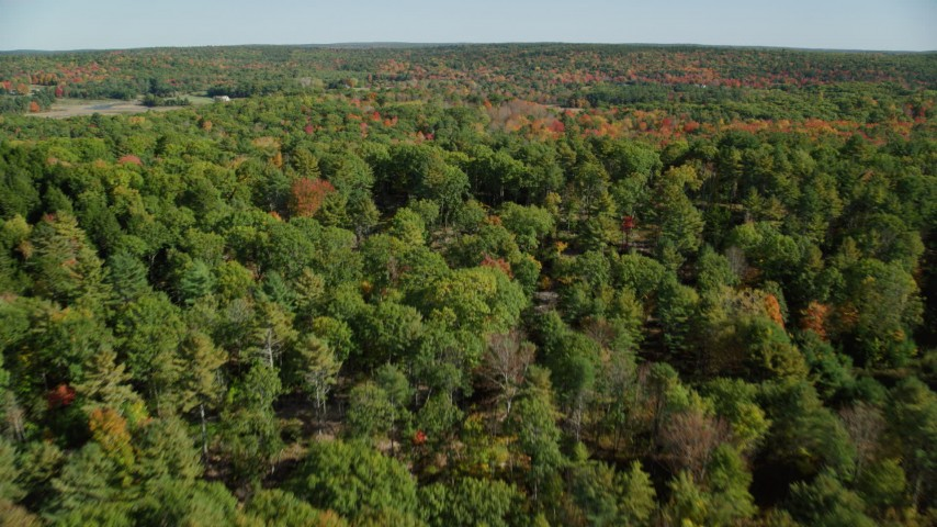 6k stock footage aerial video flying over a colorful forest in autumn, Newcastle, Maine Aerial Stock Footage | AX148_009