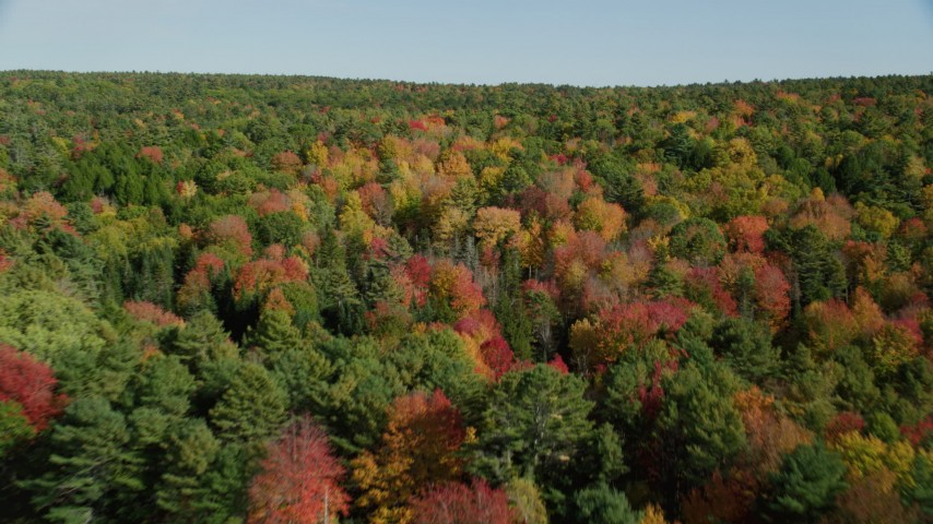 6k stock footage aerial video flying over colorful forest in autumn, Newcastle, Maine Aerial Stock Footage | AX148_012