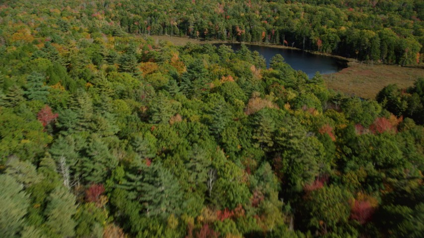 6k aerial video flying over a colorful forest and Lower Pond, autumn, Damariscotta, Maine Aerial Stock Footage | AX148_019