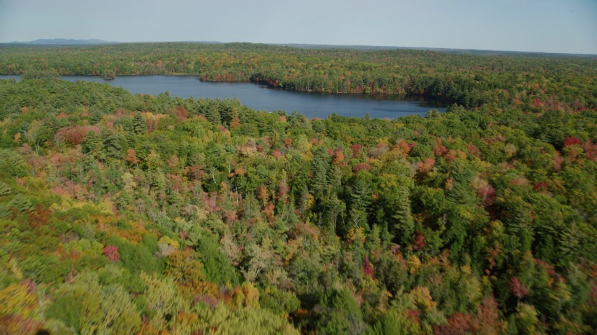 6k aerial video flying over a colorful forest, approach Mccurdy Pond, autumn, Damariscotta, Maine Aerial Stock Footage AX148_024