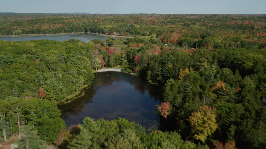 6k stock footage aerial video flying over forest and rural homes, revealing a pond, autumn, Waldoboro, Maine Aerial Stock Footage | AX148_032