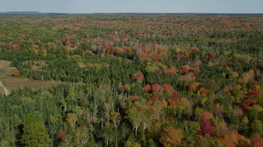 6k stock footage aerial video flying over a colorful forest in autumn, Cushing, Maine Aerial Stock Footage | AX148_036